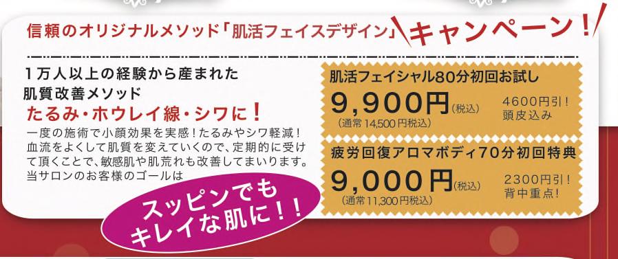 jpeghirashi_tate-b-converti